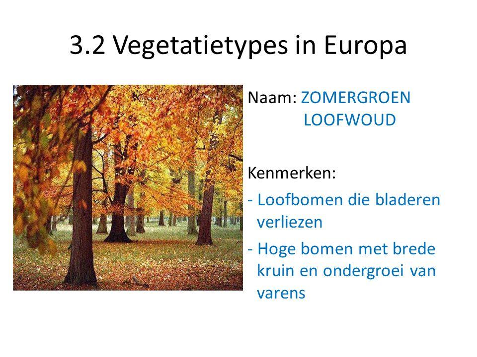 3.2 Vegetatietypes in Europa Naam: ZOMERGROEN LOOFWOUD Kenmerken: - Loofbomen die bladeren verliezen - Hoge bomen met brede kruin en ondergroei van va