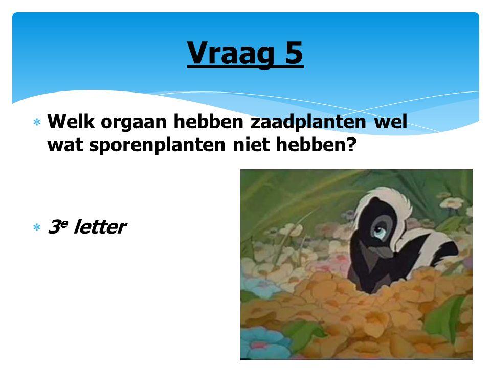 Vraag 5  Welk orgaan hebben zaadplanten wel wat sporenplanten niet hebben?  3 e letter