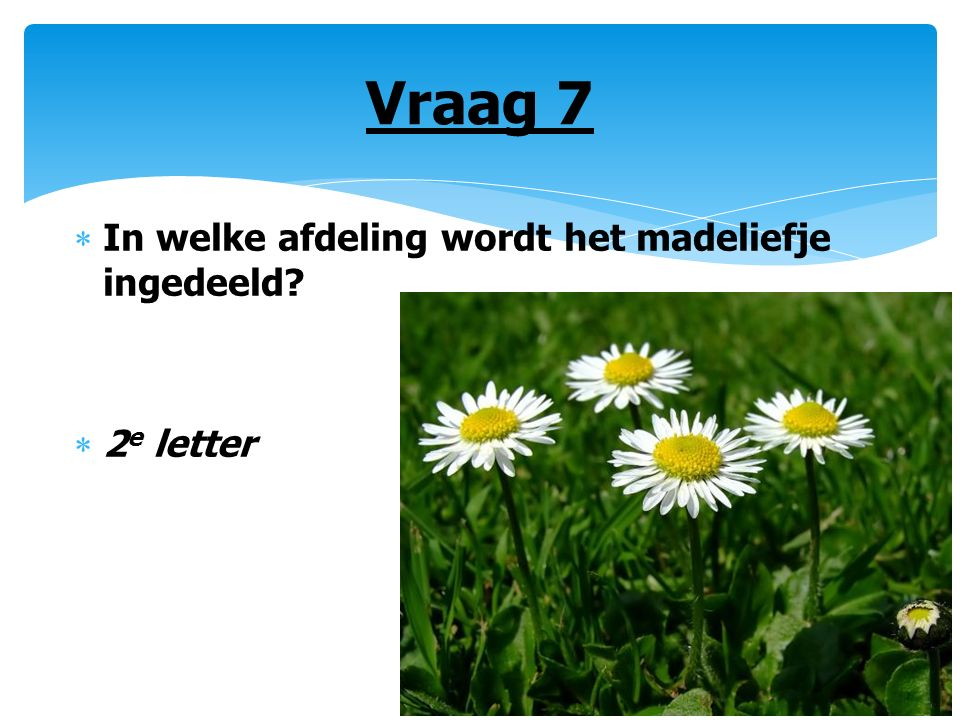 Vraag 7  In welke afdeling wordt het madeliefje ingedeeld?  2 e letter