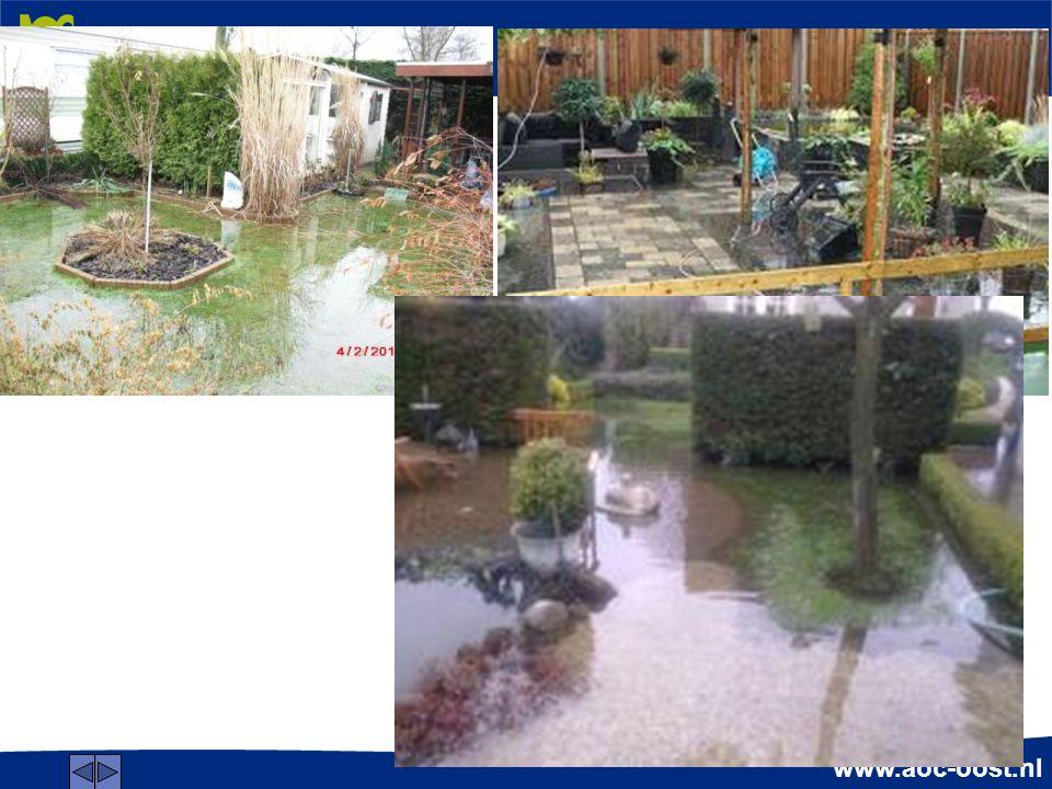 www.aoc-oost.nl Doelen Je weet hoe je wateroverlast moet onderzoeken.