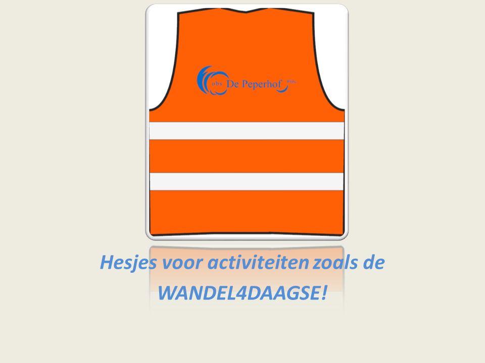 Hesjes voor activiteiten zoals de WANDEL4DAAGSE!