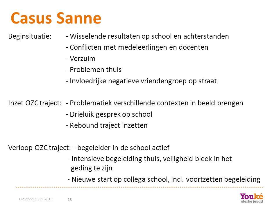 13 Casus Sanne Beginsituatie: - Wisselende resultaten op school en achterstanden - Conflicten met medeleerlingen en docenten - Verzuim - Problemen thu