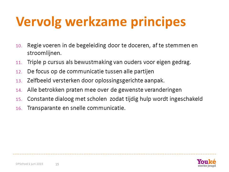 15 Vervolg werkzame principes 10. Regie voeren in de begeleiding door te doceren, af te stemmen en stroomlijnen. 11. Triple p cursus als bewustmaking