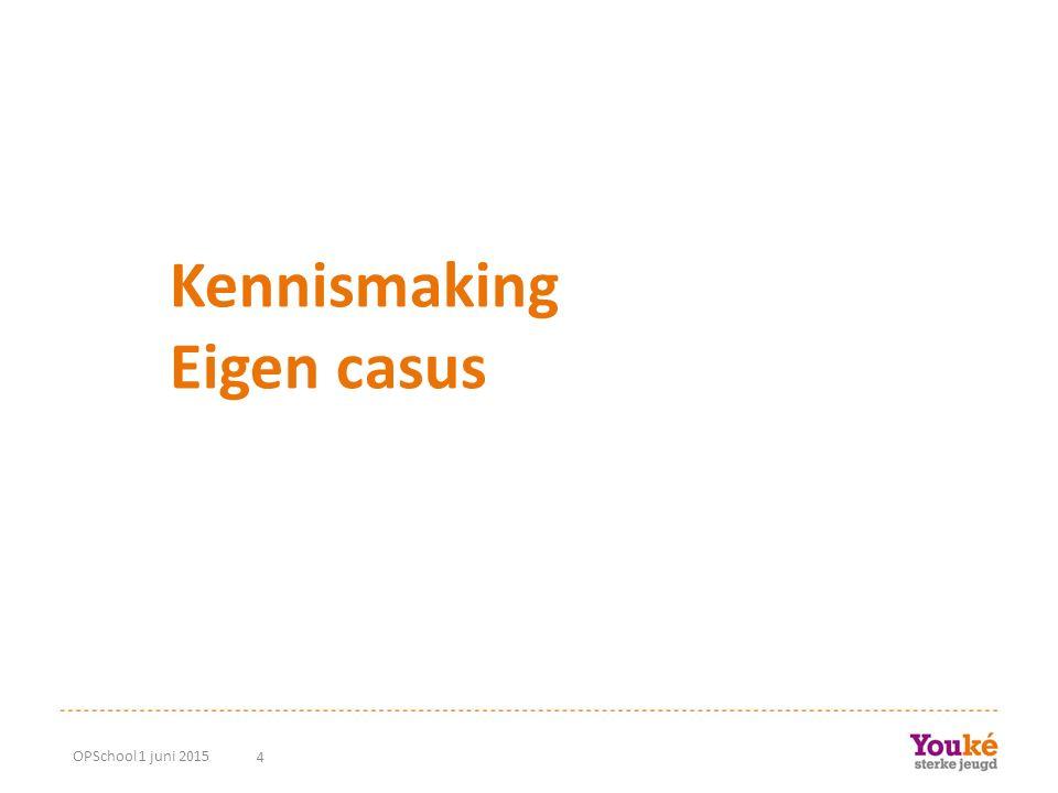 4 Kennismaking Eigen casus