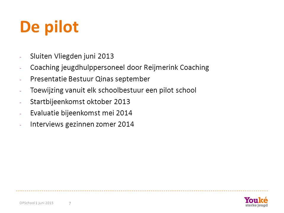 7 De pilot - Sluiten Vliegden juni 2013 - Coaching jeugdhulppersoneel door Reijmerink Coaching - Presentatie Bestuur Qinas september - Toewijzing vanu