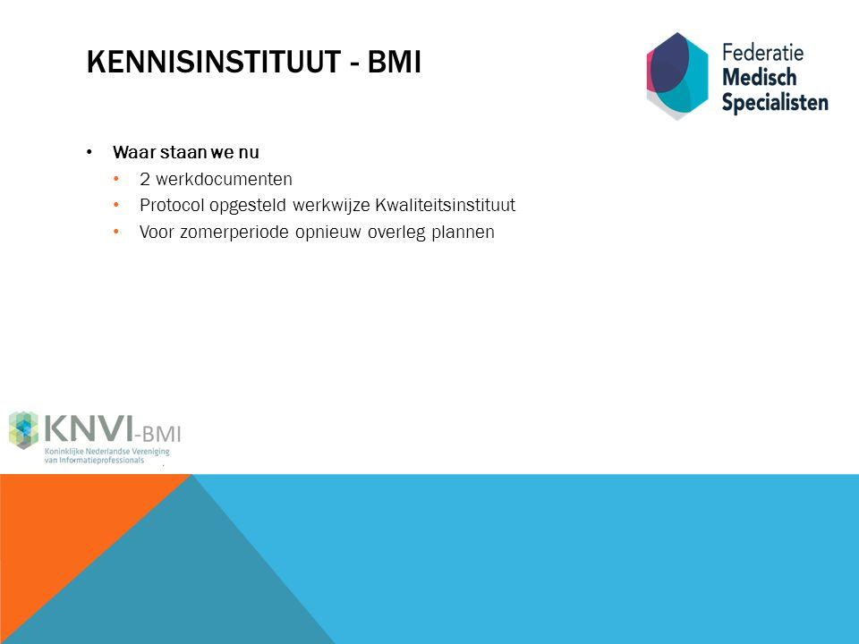KENNISINSTITUUT - BMI Waar staan we nu 2 werkdocumenten Protocol opgesteld werkwijze Kwaliteitsinstituut Voor zomerperiode opnieuw overleg plannen