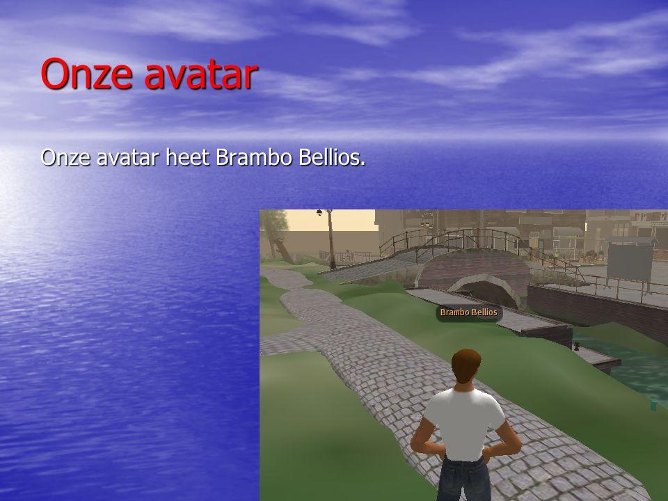 Onze avatar Onze avatar heet Brambo Bellios.