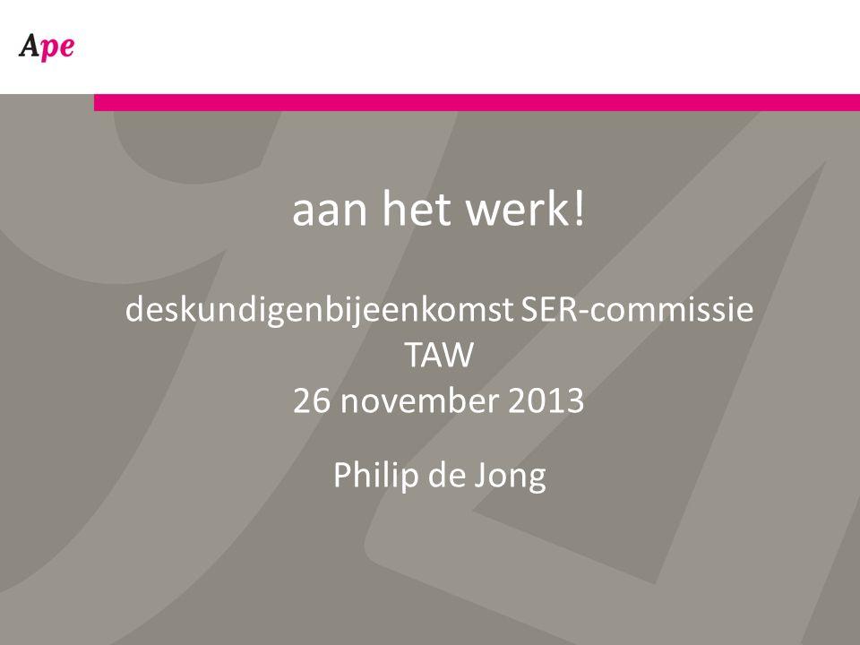 aan het werk! deskundigenbijeenkomst SER-commissie TAW 26 november 2013 Philip de Jong
