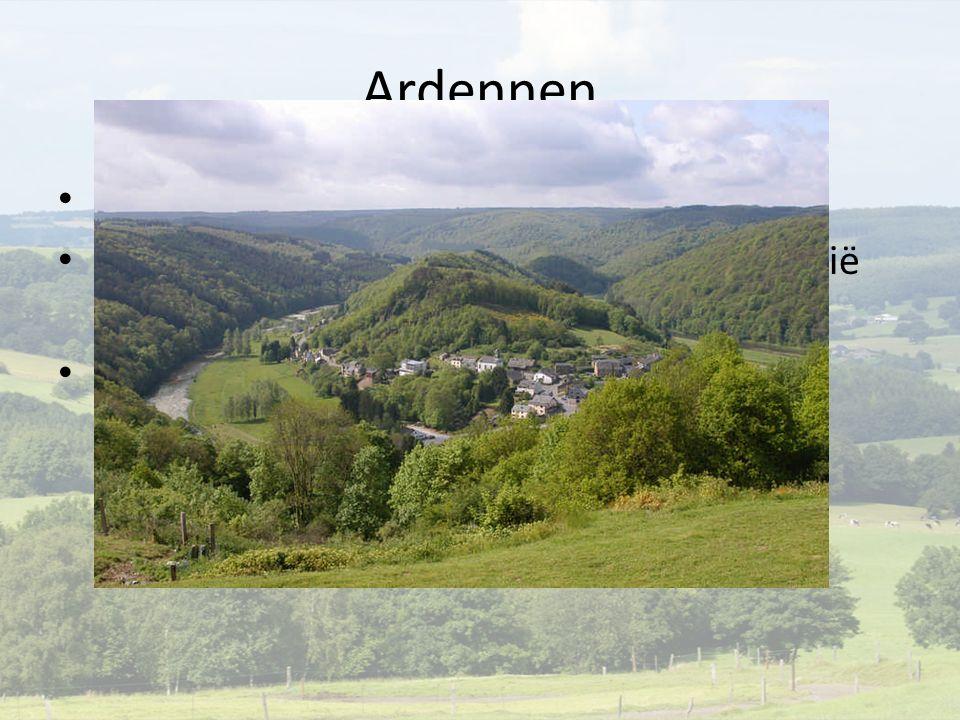 Ardennen Belgie en luxemburg 400 miljoen jaar geleden botsing laurentinië  baltica platen Bosrijk laaggebergte
