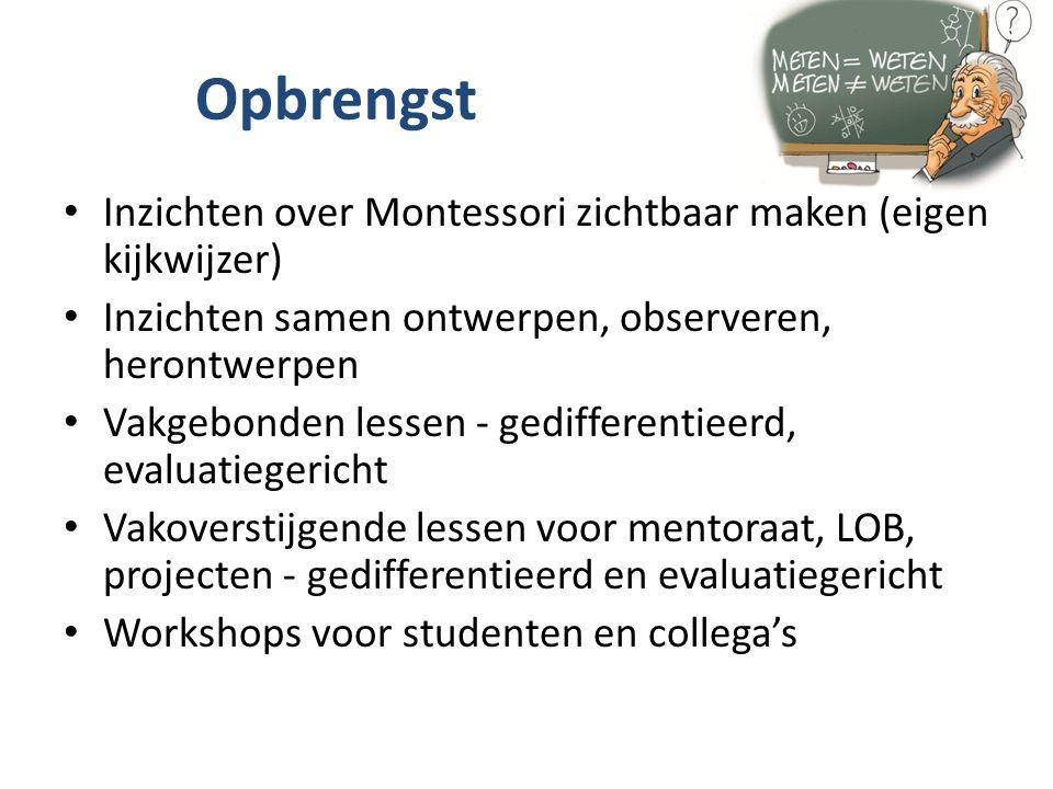 Opbrengst Inzichten over Montessori zichtbaar maken (eigen kijkwijzer) Inzichten samen ontwerpen, observeren, herontwerpen Vakgebonden lessen - gedifferentieerd, evaluatiegericht Vakoverstijgende lessen voor mentoraat, LOB, projecten - gedifferentieerd en evaluatiegericht Workshops voor studenten en collega's