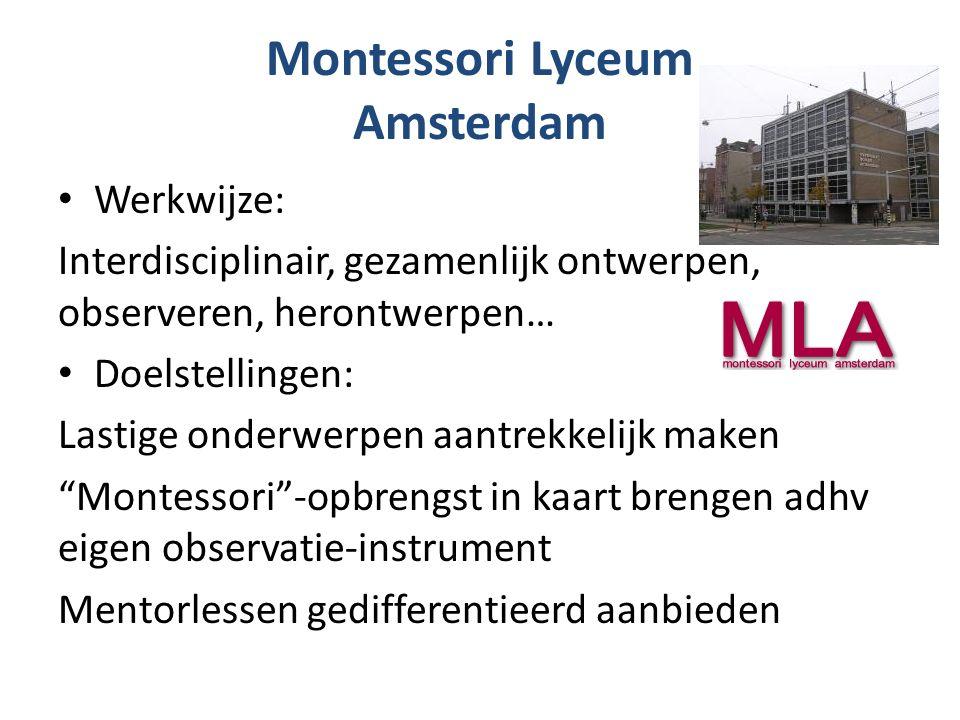 Montessori Lyceum Amsterdam Werkwijze: Interdisciplinair, gezamenlijk ontwerpen, observeren, herontwerpen… Doelstellingen: Lastige onderwerpen aantrekkelijk maken Montessori -opbrengst in kaart brengen adhv eigen observatie-instrument Mentorlessen gedifferentieerd aanbieden