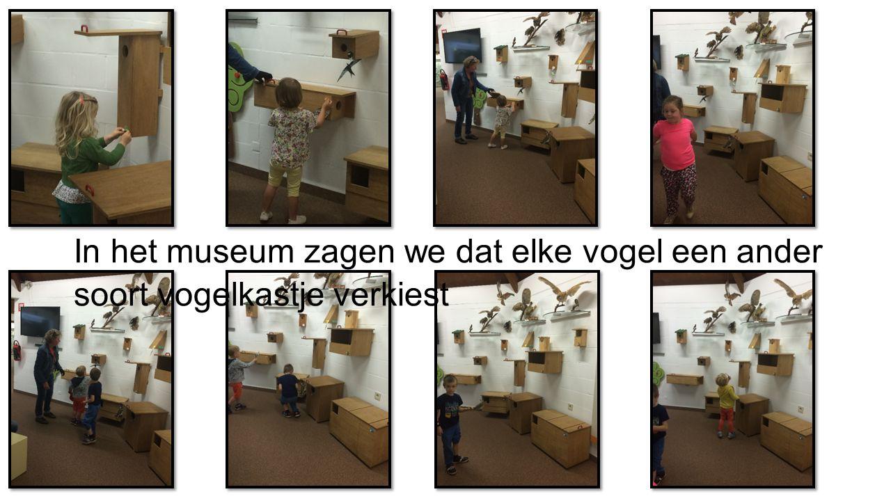 In het museum zagen we dat elke vogel een ander soort vogelkastje verkiest