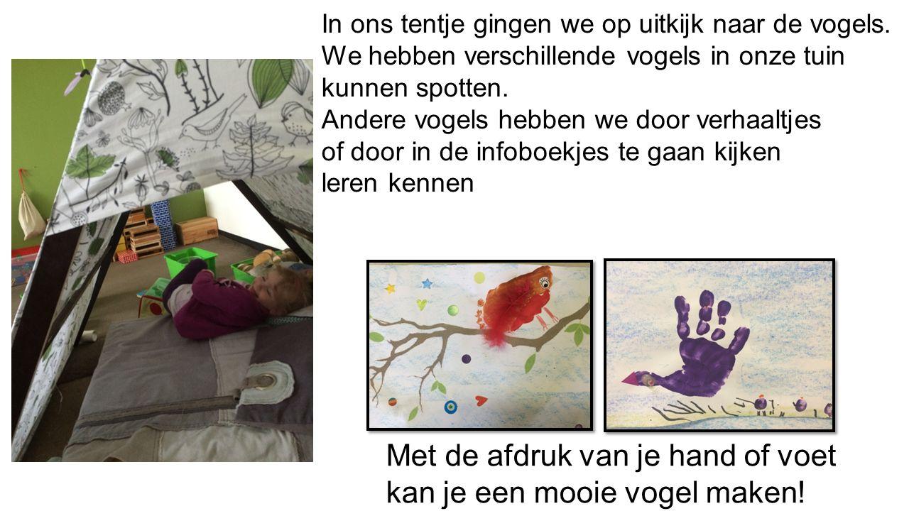 * we maakten vogels met kidknex * een uiltje timmeren mbv een stappenplan * ook op het krijtbord en het whitebord werden vogels getekend mbv stappenplannetjes.