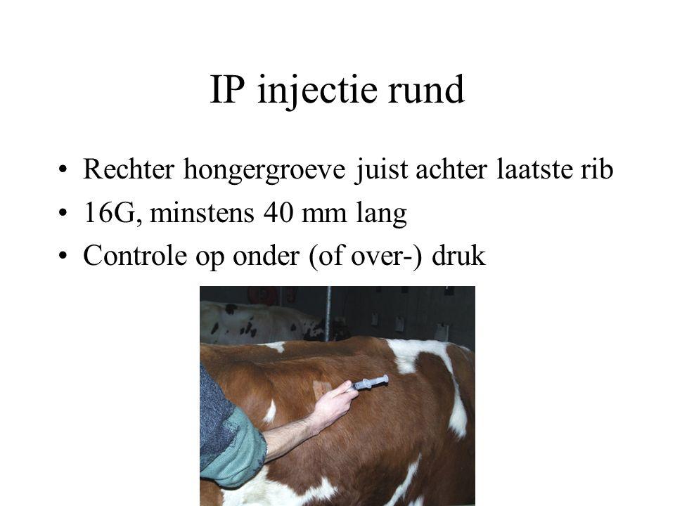 IP injectie rund Rechter hongergroeve juist achter laatste rib 16G, minstens 40 mm lang Controle op onder (of over-) druk