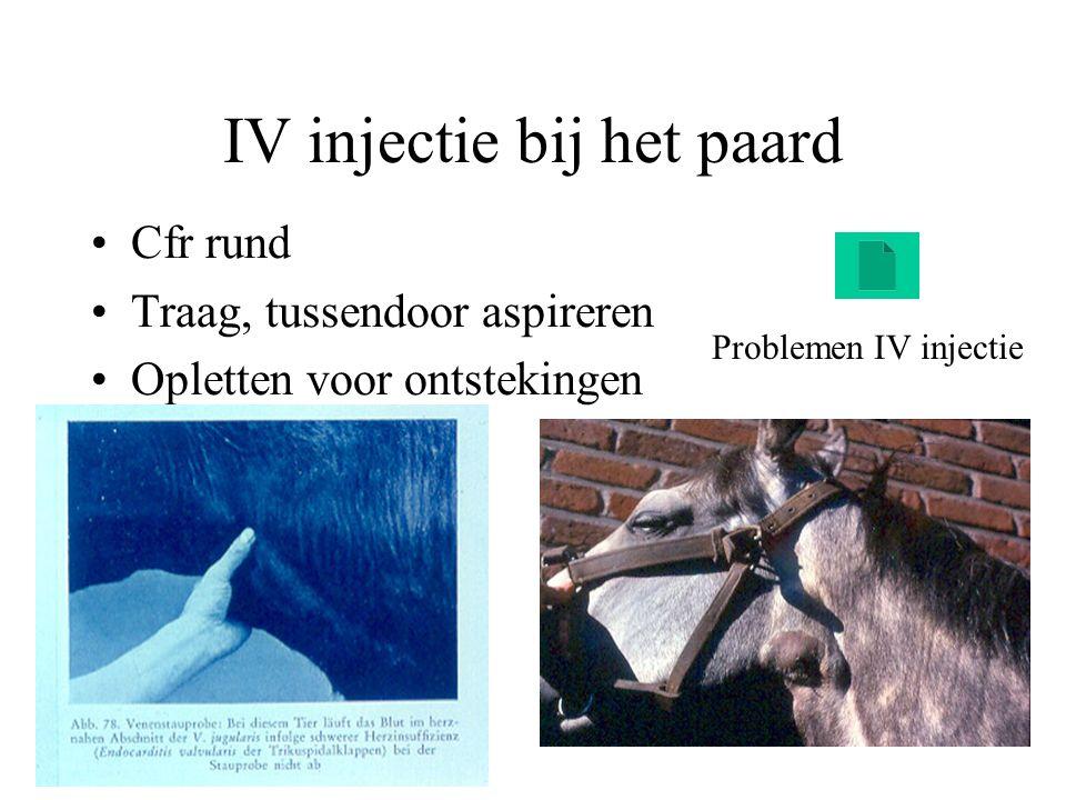 IV injectie bij het paard Cfr rund Traag, tussendoor aspireren Opletten voor ontstekingen Problemen IV injectie