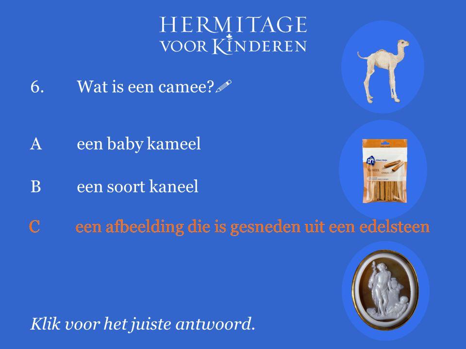 6.Wat is een camee?  Klik voor het juiste antwoord. A een baby kameel Been soort kaneel Ceen afbeelding die is gesneden uit een edelsteen