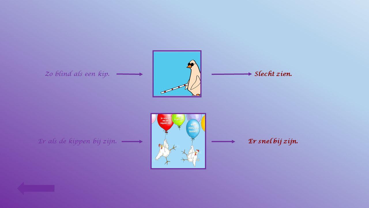 Als de kippen konden praten Verbind elke uitdrukking met de goede tekening en daarna met de goede uitleg. Met de kippen op stok gaan.Vroeg gaan slapen