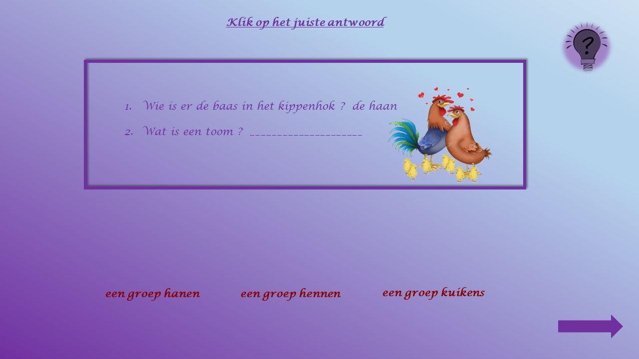 1.Wie is er de baas in het kippenhok ? ______________ Klik op het juiste antwoord de hende kipde haanhet kuiken