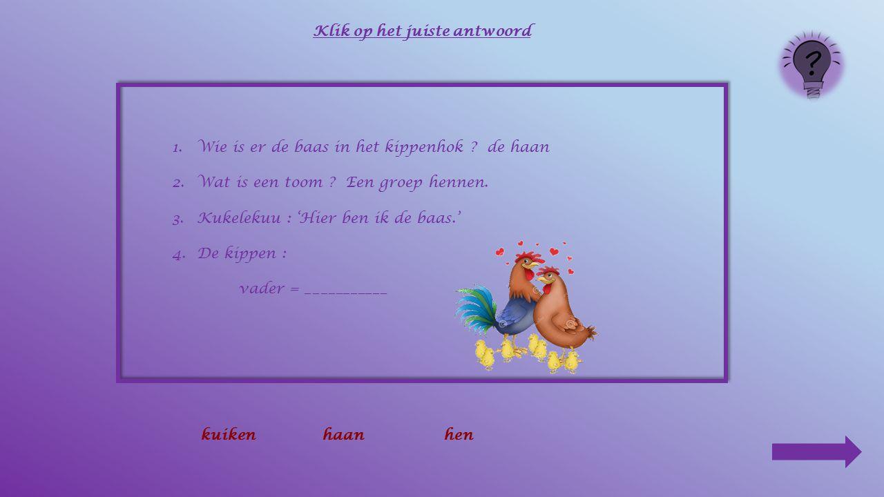 1.Wie is er de baas in het kippenhok ? de haan 2.Wat is een toom ? Een groep hennen. 3.Kukelekuu : ________________________ Klik op het juiste antwoor