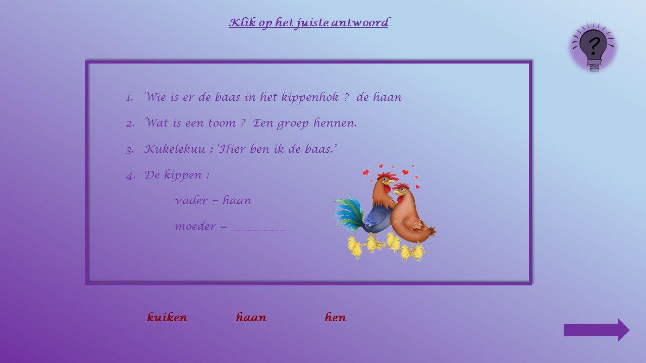 1.Wie is er de baas in het kippenhok ? de haan 2.Wat is een toom ? Een groep hennen. 3.Kukelekuu : 'Hier ben ik de baas.' 4.De kippen : vader = ______