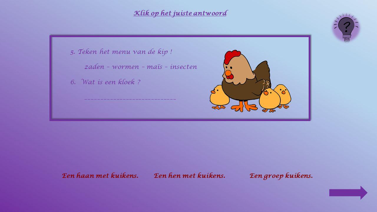 5. Teken het menu van de kip ! ____________ Klik op het juiste antwoord knaagdierenwormenmelk zadeninsectenmaïs