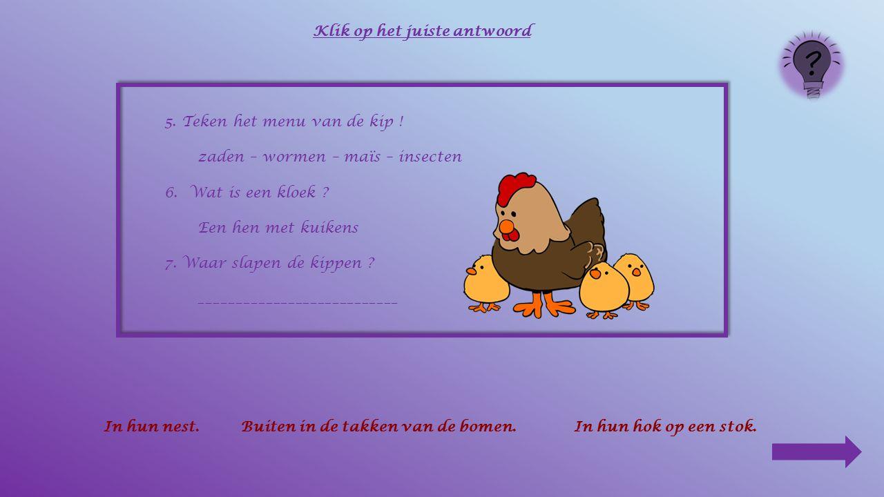 5. Teken het menu van de kip ! zaden – wormen – maïs – insecten 6.Wat is een kloek ? _____________________________ Klik op het juiste antwoord Een haa