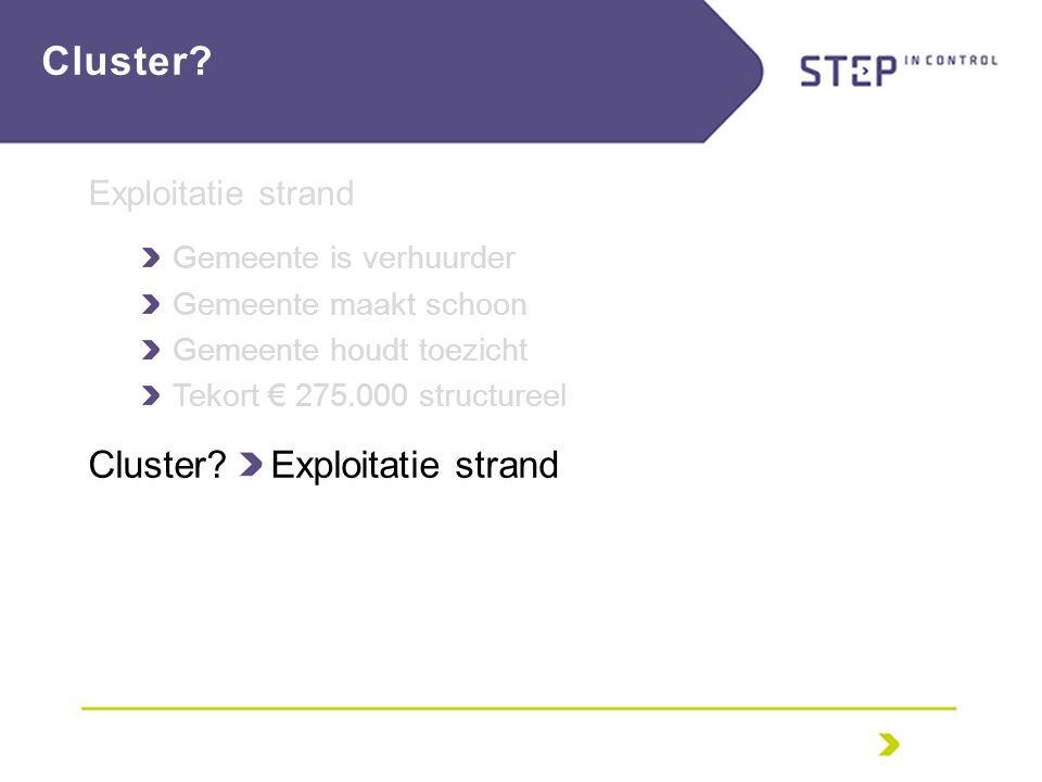Exploitatie strand Gemeente is verhuurder Gemeente maakt schoon Gemeente houdt toezicht Tekort € 275.000 structureel Cluster.