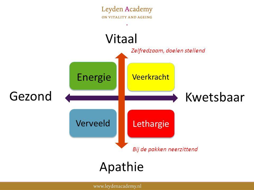 9 'Bejaardenhuis' Haarlemmermeer