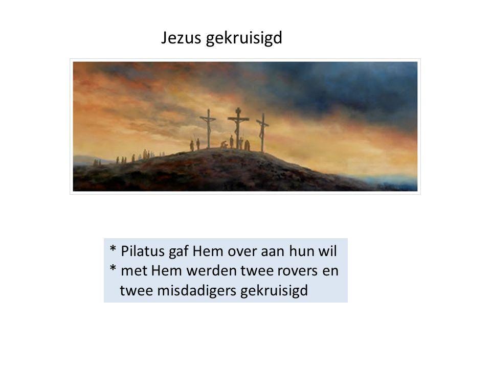 Jezus gekruisigd * Pilatus gaf Hem over aan hun wil * met Hem werden twee rovers en twee misdadigers gekruisigd