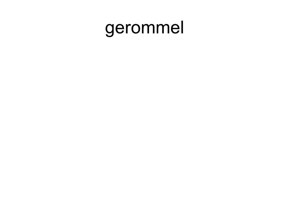 gerommel