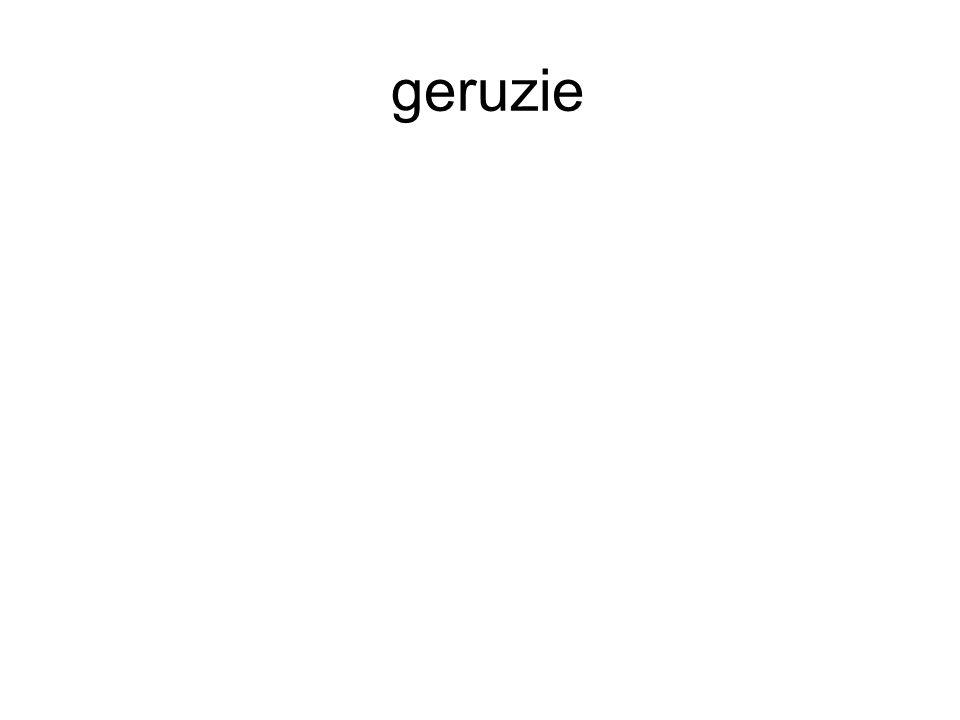 geruzie