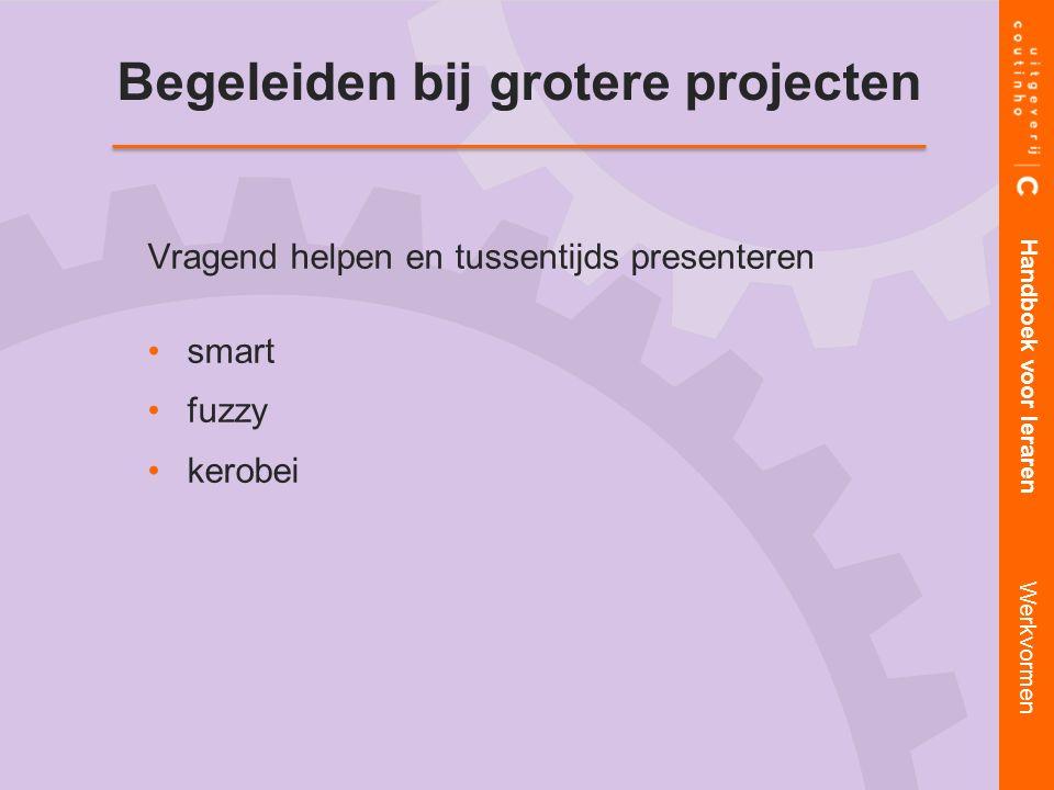 Begeleiden bij grotere projecten Vragend helpen en tussentijds presenteren smart fuzzy kerobei Handboek voor leraren Werkvormen
