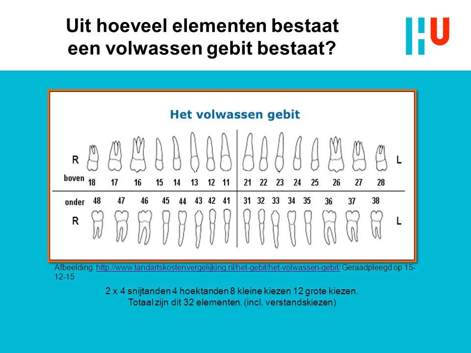 Uit hoeveel elementen bestaat een volwassen gebit bestaat? 2 x 4 snijtanden 4 hoektanden 8 kleine kiezen 12 grote kiezen. Totaal zijn dit 32 elementen