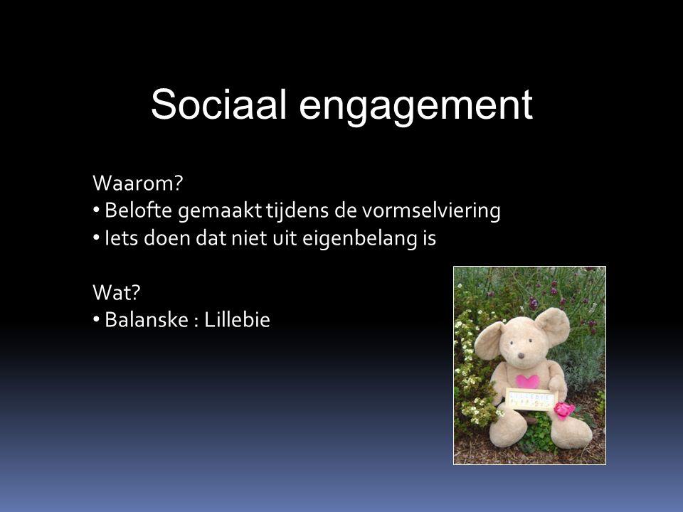 Sociaal engagement Waarom.