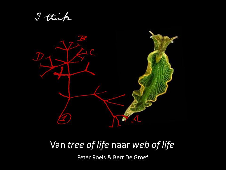 Van tree of life naar web of life Peter Roels & Bert De Groef