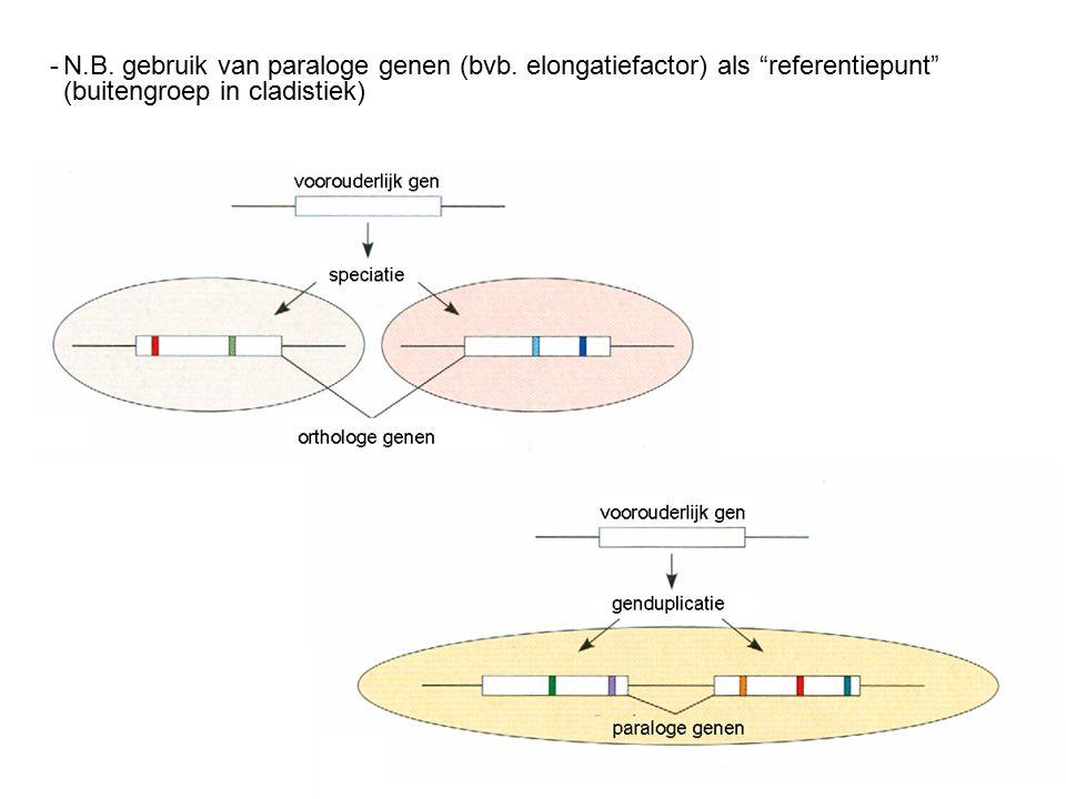 -N.B. gebruik van paraloge genen (bvb.