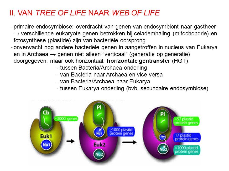II. VAN TREE OF LIFE NAAR WEB OF LIFE -primaire endosymbiose: overdracht van genen van endosymbiont naar gastheer → verschillende eukaryote genen betr