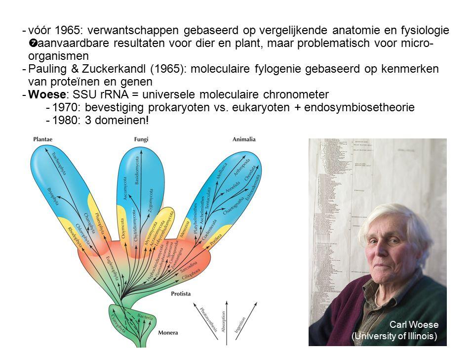 -vóór 1965: verwantschappen gebaseerd op vergelijkende anatomie en fysiologie  aanvaardbare resultaten voor dier en plant, maar problematisch voor micro- organismen -Pauling & Zuckerkandl (1965): moleculaire fylogenie gebaseerd op kenmerken van proteïnen en genen -Woese: SSU rRNA = universele moleculaire chronometer -1970: bevestiging prokaryoten vs.