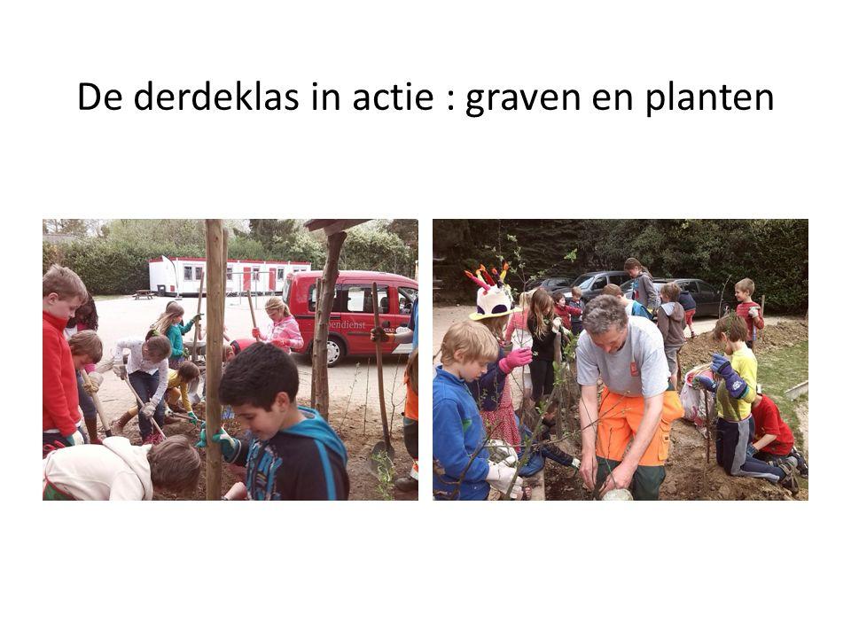 De derdeklas in actie : graven en planten