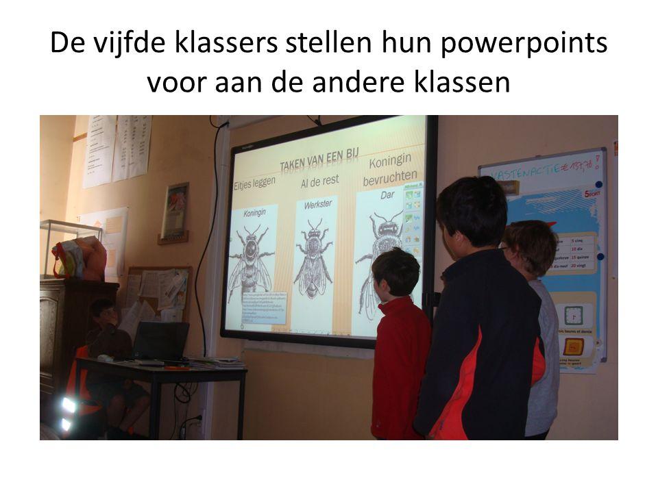 De vijfde klassers stellen hun powerpoints voor aan de andere klassen
