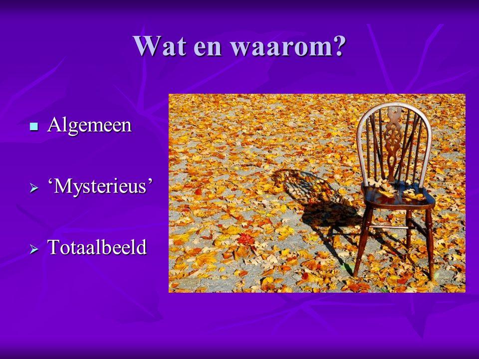 Wat en waarom? Algemeen Algemeen  'Mysterieus'  Totaalbeeld