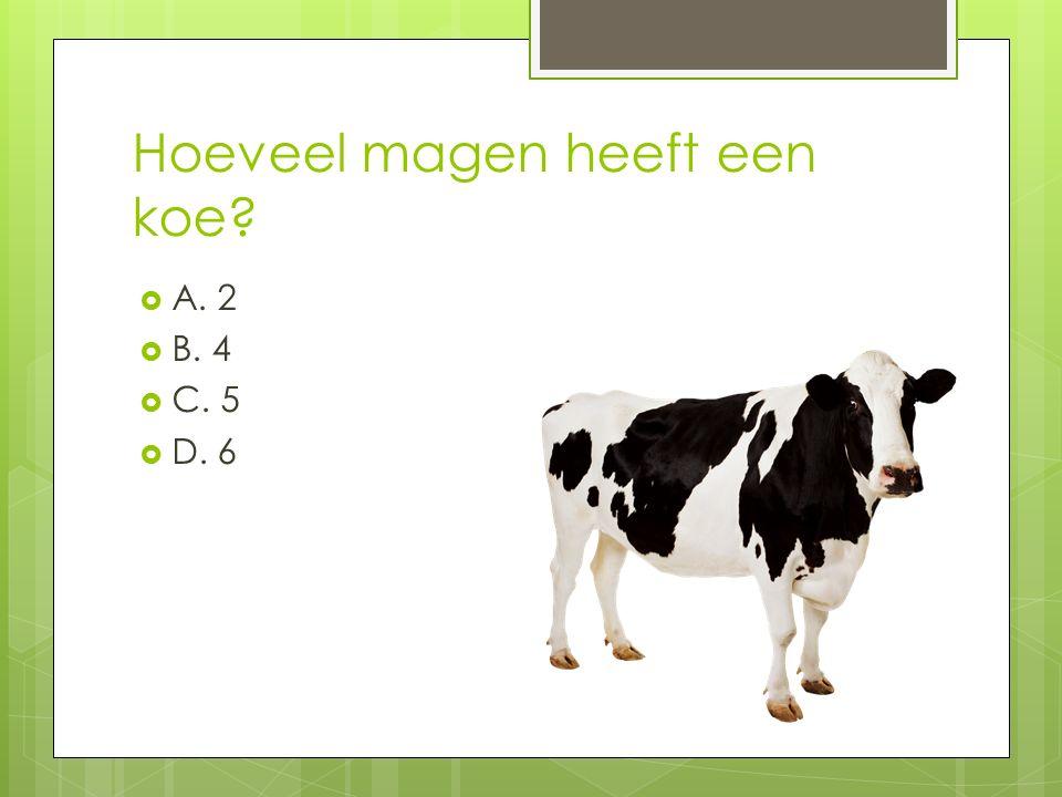 Hoeveel magen heeft een koe?  A. 2  B. 4  C. 5  D. 6