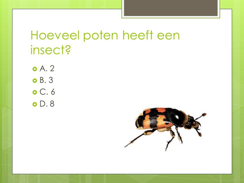 Hoeveel poten heeft een insect?  A. 2  B. 3  C. 6  D. 8