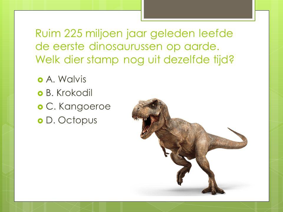 Ruim 225 miljoen jaar geleden leefde de eerste dinosaurussen op aarde.