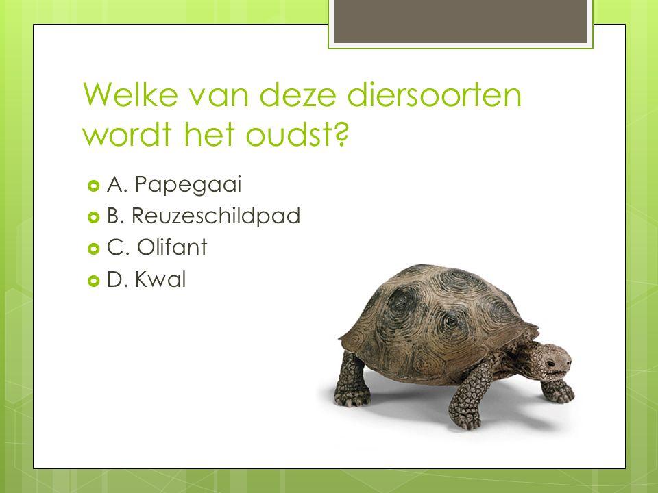 Welke van deze diersoorten wordt het oudst. A. Papegaai  B.