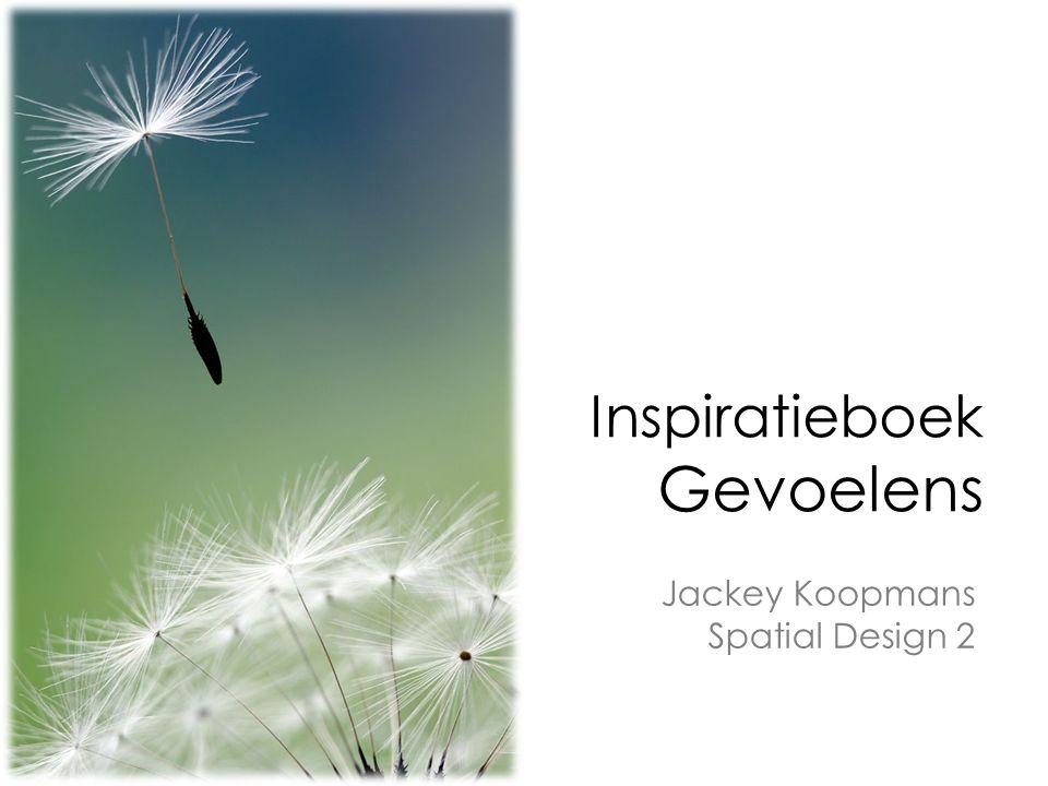 Inspiratieboek Gevoelens Jackey Koopmans Spatial Design 2
