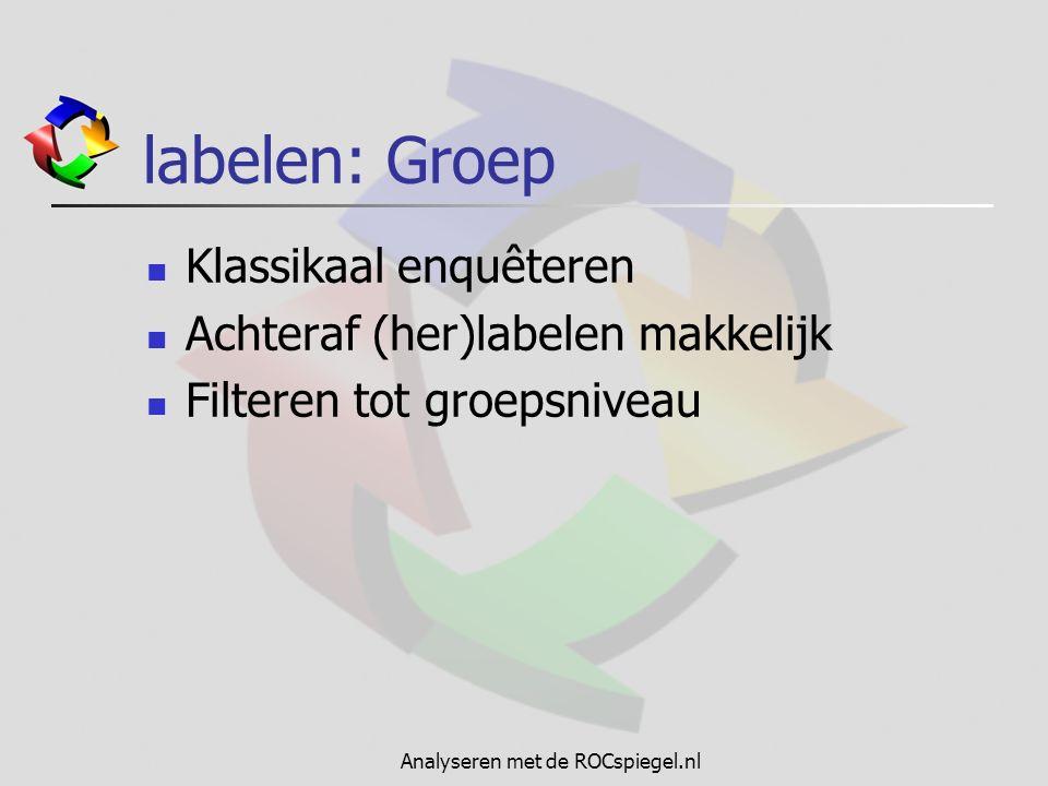Analyseren met de ROCspiegel.nl labelen: Respondent Per e-mail of code enquêteren Achteraf (her)labelen lastig Filteren tot op respondent niveau