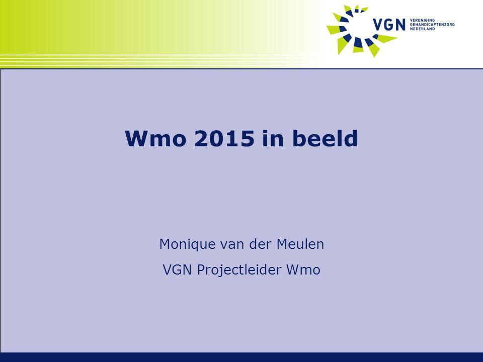 Wmo 2015 in beeld Monique van der Meulen VGN Projectleider Wmo