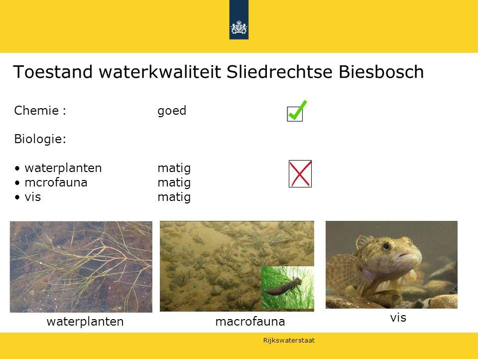 Rijkswaterstaat Toestand waterkwaliteit Sliedrechtse Biesbosch Chemie:goed Biologie: waterplanten matig mcrofaunamatig vismatig macrofauna vis waterplanten