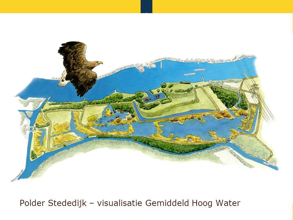 Rijkswaterstaat 924-6-2016 Polder Stededijk – visualisatie Gemiddeld Hoog Water
